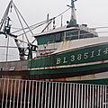 DSC02464