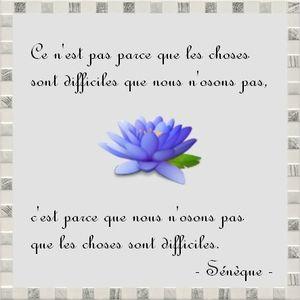 Citation Le Blog Du Bien Etre