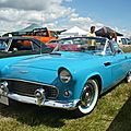 FORD Thunderbird 2door convertible 1956 Eutingen im Gau (1)