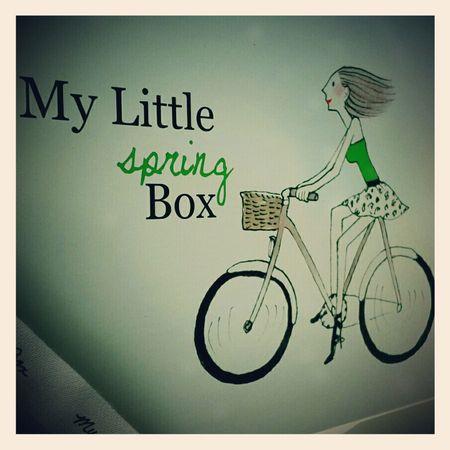 my_little_spring_box