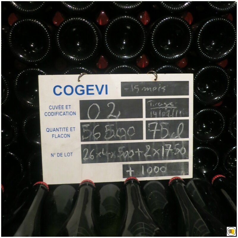 Prix Champagne Collet (34)