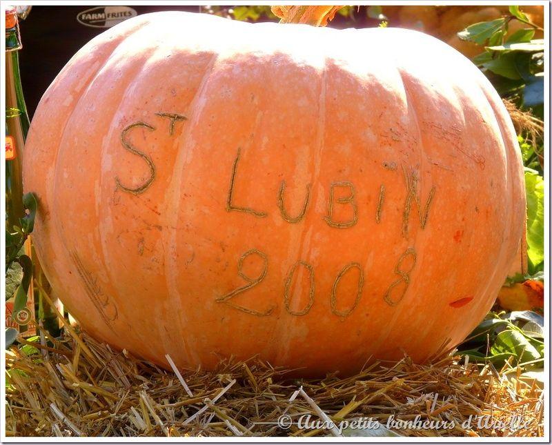 Saint Lubin (1)