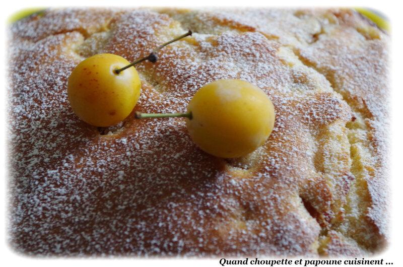 gâteau yaourt à la mirabelles-6271