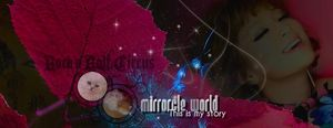 New_mirrorcle_world_1