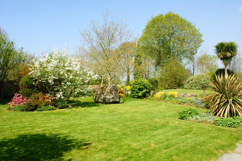 jardin printemps 2009 034