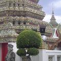Thai (270)