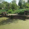 Sortie Zoo de la Boissière du Doré