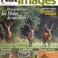 Nat'images n°5, pour les amoureux de nature et du mont saint-michel.