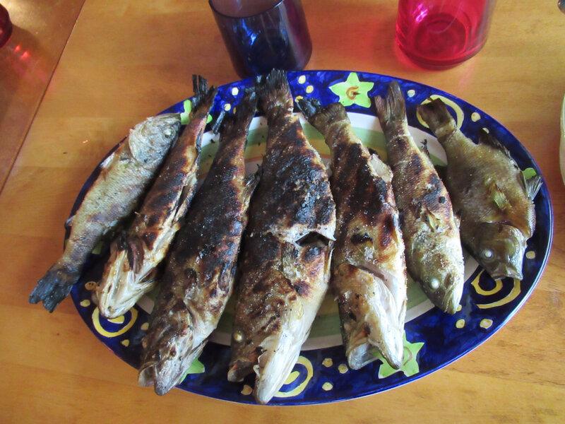 4 juin 2017 Chalet Pêche APN(60)