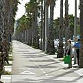 beach-barceloneta-18_jpg
