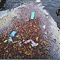 plastique_knutsch