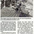 Rosalia alpina découverte à abondance (articles du messager et du dauphiné)