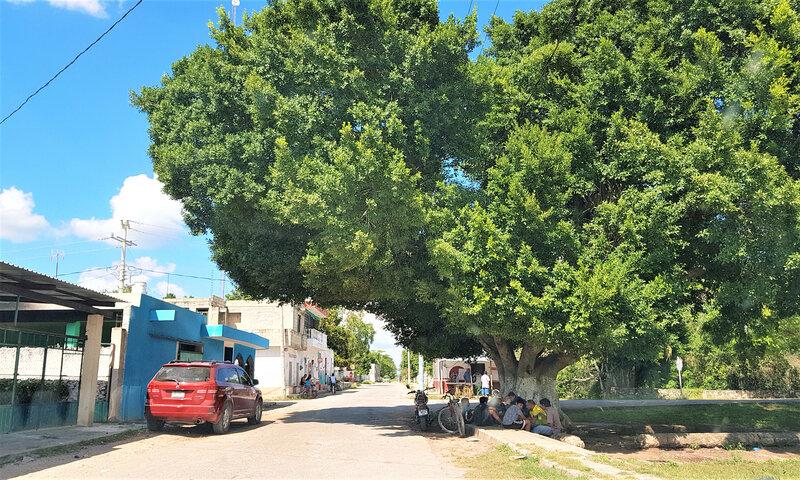 route cenote (2)7