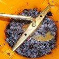 Recette de confiture/gelée de mahonia
