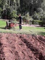 Bader évacue les tiges des fèves
