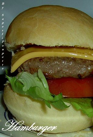 Hamburger Gourmand