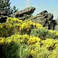 Autour des roches marlin 567 m. – châteauneuf 42800 - parc naturel du pilat