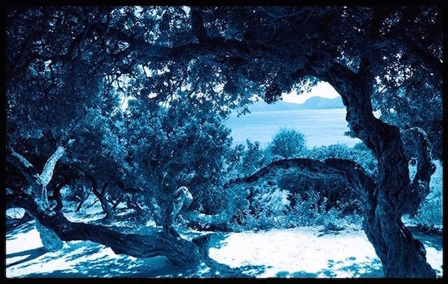 chanel blue serum lenstique grece