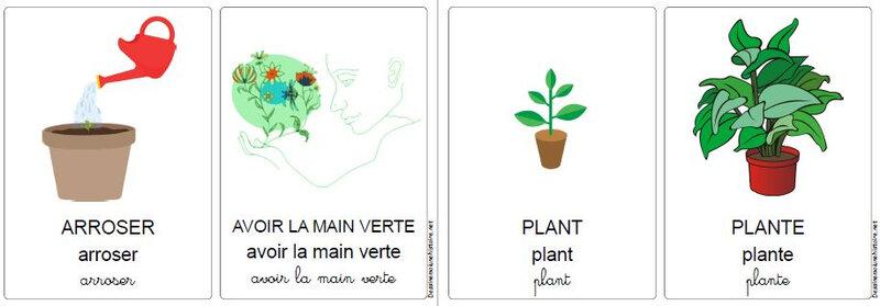 vocabulaire du jardin 7