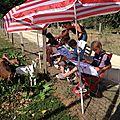 Cet été, l'atelier s'est promené vers les roulottes de la ferme de sirguet...