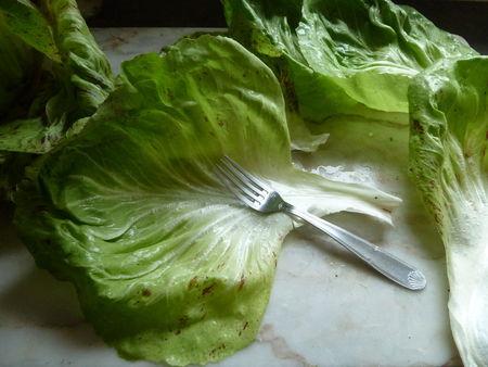 8_salade_g_ante__5_