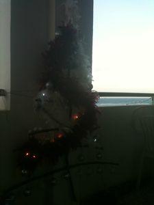 decembre2012 djib 019