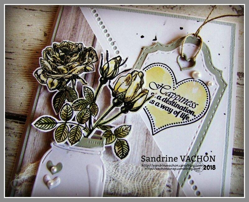 Sandrine VACHON défi 523 PCC (2)