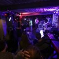 ViolettPi-FestivalFrancoFaune-2014-1