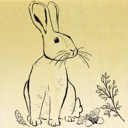 collection-animaux-des-bois-lapin