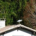 Levignacq 071216