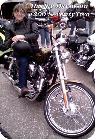 Essais_Harley_Davidson2