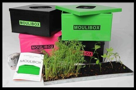 moulibox composteur d interieur 1