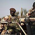 L'armée malienne et les exactions