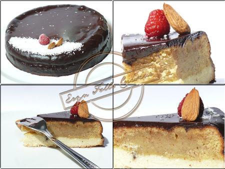 gateau_coco_amande_glacage_cacao_framboise2