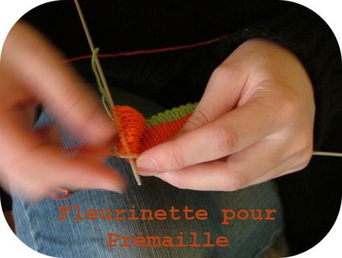 Fleurinette - tricoteuse