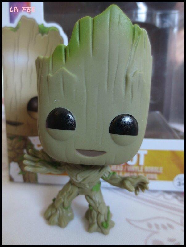 Petit Groot (6)