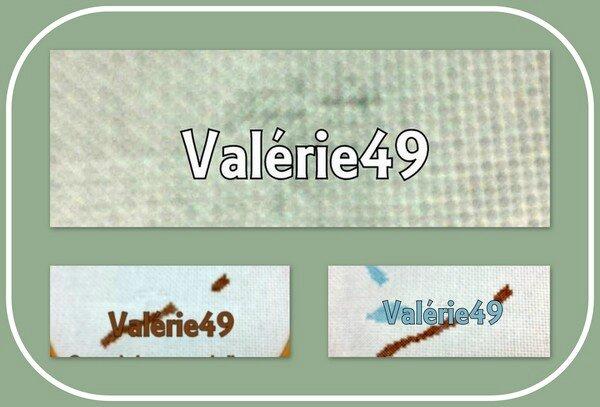 valérie49_salmar16_col1