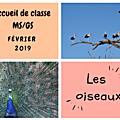 Accueil de classe - moyenne et grande section - février 2019