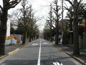 Canalblog_Tokyo03_11_Avril_2010_007