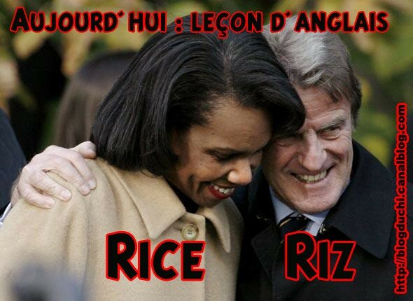 rice uncle bern