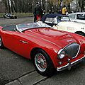 Austin healey 100 1953-1956