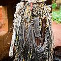 Grand maître marabout voyant spirituel medium maitre amegandji
