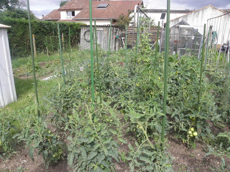 le jardin 011