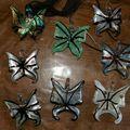 papillons dispo