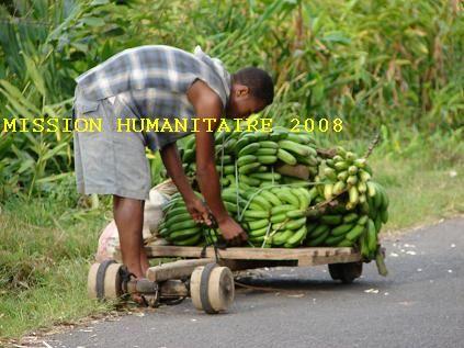 Le_transporteur_de_bananes