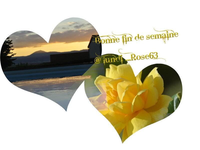 Bonne fin de semaine Rose63