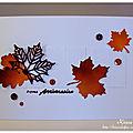 Tourbillons de feuilles d'automne !!!