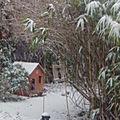 Il neige.....