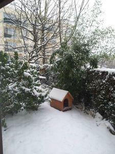 jour de neige 001