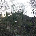 Front de taille, bois de Romainville.